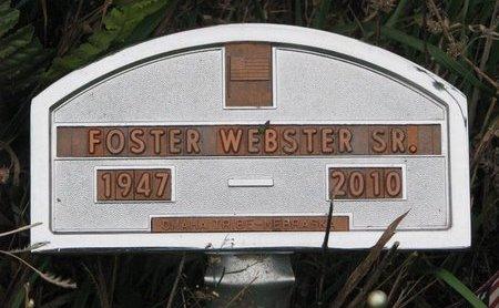 WEBSTER, FOSTER SR. - Thurston County, Nebraska | FOSTER SR. WEBSTER - Nebraska Gravestone Photos