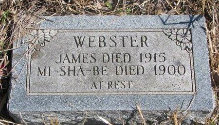 WEBSTER, JAMES - Thurston County, Nebraska | JAMES WEBSTER - Nebraska Gravestone Photos