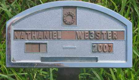 WEBSTER, NATHANIEL - Thurston County, Nebraska | NATHANIEL WEBSTER - Nebraska Gravestone Photos