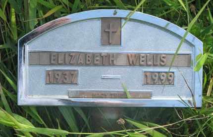 WELLS, ELIZABETH - Thurston County, Nebraska | ELIZABETH WELLS - Nebraska Gravestone Photos