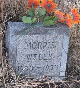 WELLS, MORRIS - Thurston County, Nebraska | MORRIS WELLS - Nebraska Gravestone Photos