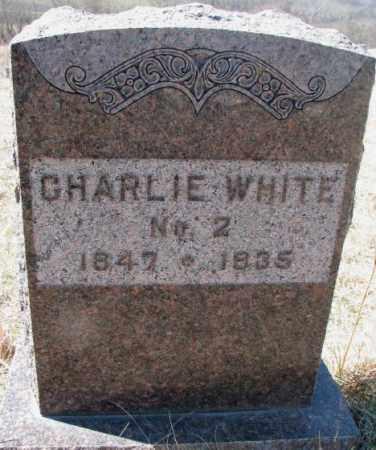WHITE, CHARLIE - Thurston County, Nebraska | CHARLIE WHITE - Nebraska Gravestone Photos