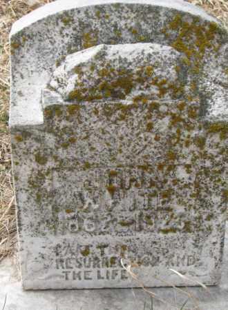 WHITE, JOHN - Thurston County, Nebraska | JOHN WHITE - Nebraska Gravestone Photos