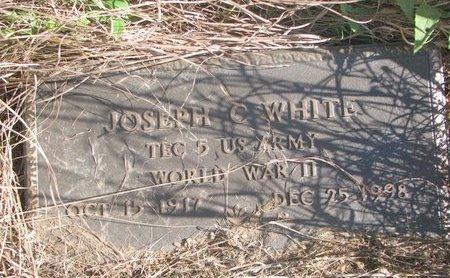 WHITE, JOSEPH C. - Thurston County, Nebraska | JOSEPH C. WHITE - Nebraska Gravestone Photos