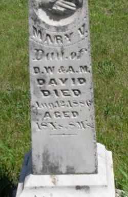DAVID, MARY V. - Valley County, Nebraska   MARY V. DAVID - Nebraska Gravestone Photos