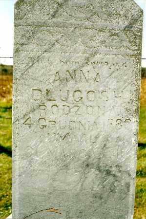 DLUGOSH, ANNA - Valley County, Nebraska | ANNA DLUGOSH - Nebraska Gravestone Photos