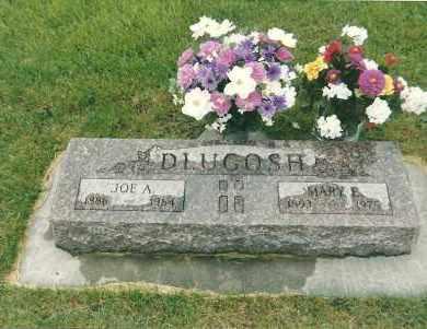 DLUGOSH, JOE A - Valley County, Nebraska | JOE A DLUGOSH - Nebraska Gravestone Photos