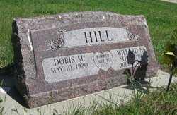 HILL, WILLARD N - Valley County, Nebraska   WILLARD N HILL - Nebraska Gravestone Photos