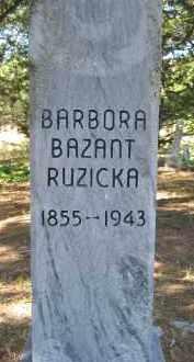 BAZANT, BARBORA - Valley County, Nebraska | BARBORA BAZANT - Nebraska Gravestone Photos