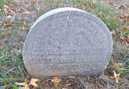 DEWEY, A. RAYMOND - Washington County, Nebraska | A. RAYMOND DEWEY - Nebraska Gravestone Photos