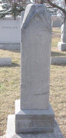 AMES, JOSEPH PIERCE JR. - Washington County, Nebraska | JOSEPH PIERCE JR. AMES - Nebraska Gravestone Photos