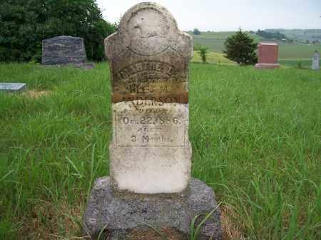ANDERSON, MARTHE LOUISE - Washington County, Nebraska | MARTHE LOUISE ANDERSON - Nebraska Gravestone Photos