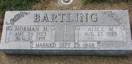 BARTLING, ALICE M. - Washington County, Nebraska | ALICE M. BARTLING - Nebraska Gravestone Photos