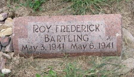 BARTLING, ROY FREDERICK - Washington County, Nebraska | ROY FREDERICK BARTLING - Nebraska Gravestone Photos