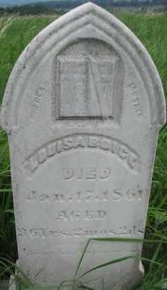 BOICE, LOUISA - Washington County, Nebraska | LOUISA BOICE - Nebraska Gravestone Photos