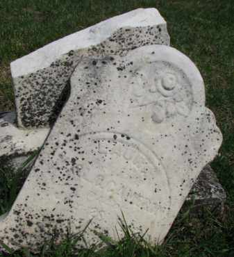 CAMERON, LAURA - Washington County, Nebraska | LAURA CAMERON - Nebraska Gravestone Photos