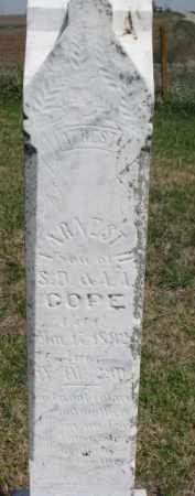 COPE, ARNEST - Washington County, Nebraska | ARNEST COPE - Nebraska Gravestone Photos