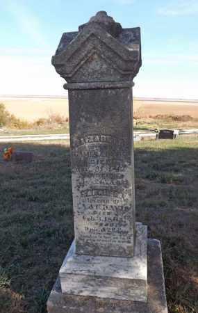 DAVIS, ELIZABETH - Washington County, Nebraska | ELIZABETH DAVIS - Nebraska Gravestone Photos