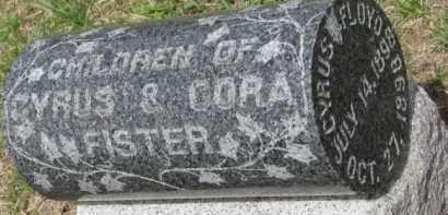FISTER, GUY PHILIP - Washington County, Nebraska | GUY PHILIP FISTER - Nebraska Gravestone Photos