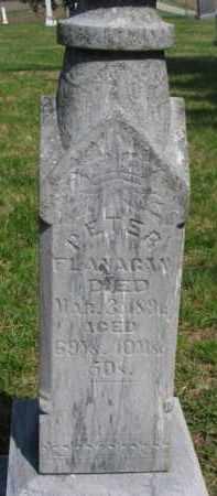 FLANAGAN, PETER - Washington County, Nebraska   PETER FLANAGAN - Nebraska Gravestone Photos