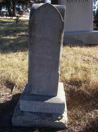 HANSEN, CHRISTIAN F. - Washington County, Nebraska | CHRISTIAN F. HANSEN - Nebraska Gravestone Photos