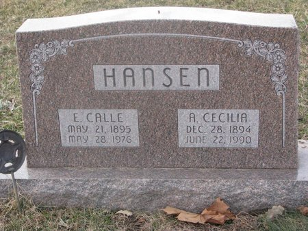 HANSEN, ESKE CALLE - Washington County, Nebraska | ESKE CALLE HANSEN - Nebraska Gravestone Photos
