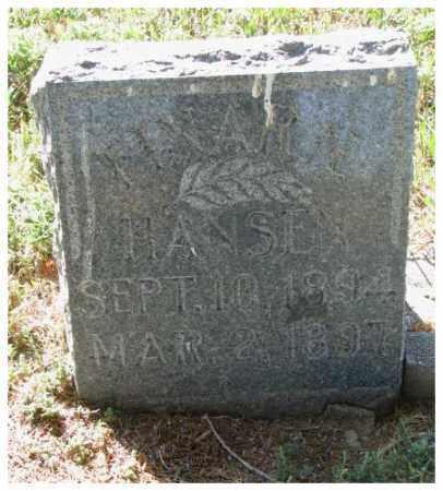 HANSEN, EINARN - Washington County, Nebraska | EINARN HANSEN - Nebraska Gravestone Photos