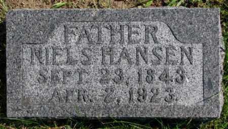 HANSEN, NIELS - Washington County, Nebraska | NIELS HANSEN - Nebraska Gravestone Photos