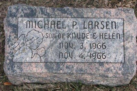LARSEN, MICHAEL P. - Washington County, Nebraska   MICHAEL P. LARSEN - Nebraska Gravestone Photos