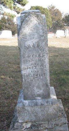 MILLER, WILLIAM J. - Washington County, Nebraska | WILLIAM J. MILLER - Nebraska Gravestone Photos
