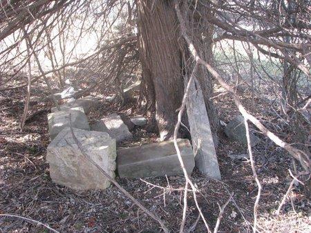 *SHIPLEY, BROKEN STONES UNDER TREE - Washington County, Nebraska | BROKEN STONES UNDER TREE *SHIPLEY - Nebraska Gravestone Photos
