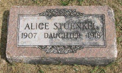 STUENKEL, ALICE - Washington County, Nebraska | ALICE STUENKEL - Nebraska Gravestone Photos