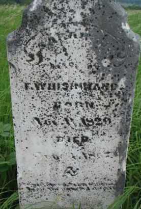 WHISINNAND, SARAH - Washington County, Nebraska | SARAH WHISINNAND - Nebraska Gravestone Photos