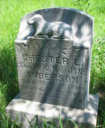 ANDERSON, CHESTER L. - Wayne County, Nebraska | CHESTER L. ANDERSON - Nebraska Gravestone Photos