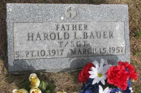 BAUER, HAROLD L. - Wayne County, Nebraska | HAROLD L. BAUER - Nebraska Gravestone Photos