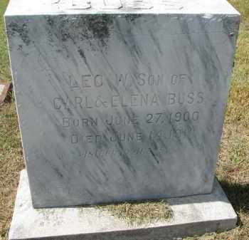 BUSS, LEO - Wayne County, Nebraska   LEO BUSS - Nebraska Gravestone Photos