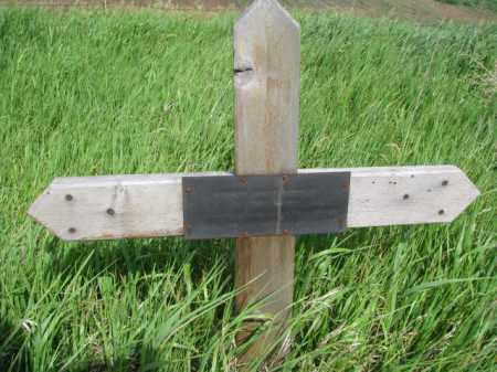 JEHLMEIER, HENRIETTA - Wayne County, Nebraska | HENRIETTA JEHLMEIER - Nebraska Gravestone Photos