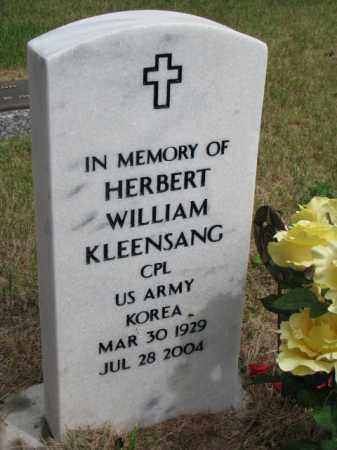 KLEENSANG, HERBERT - Wayne County, Nebraska | HERBERT KLEENSANG - Nebraska Gravestone Photos