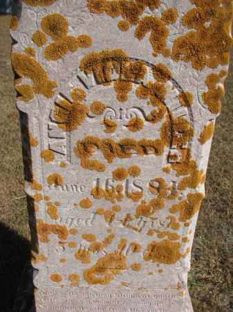MILLER, ANGIE VIOLA - Wayne County, Nebraska | ANGIE VIOLA MILLER - Nebraska Gravestone Photos