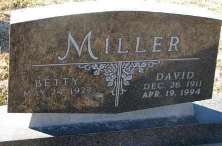 MILLER, DAVID - Wayne County, Nebraska   DAVID MILLER - Nebraska Gravestone Photos