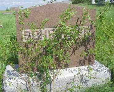 SCHROEDER, FAMILY STONE - Wayne County, Nebraska | FAMILY STONE SCHROEDER - Nebraska Gravestone Photos