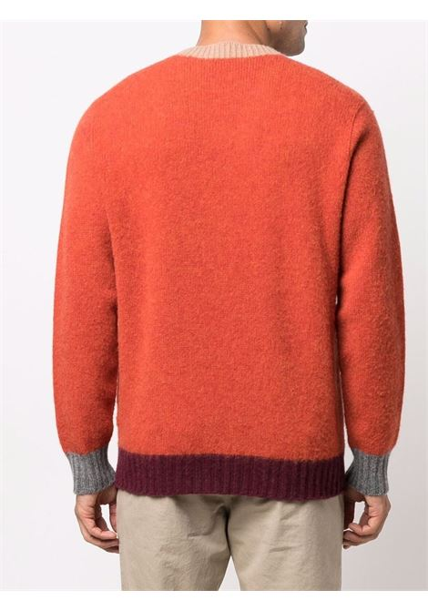 Maglione arancione in lana vergine con bordi a contrasto ALTEA | Maglieria | 216120566
