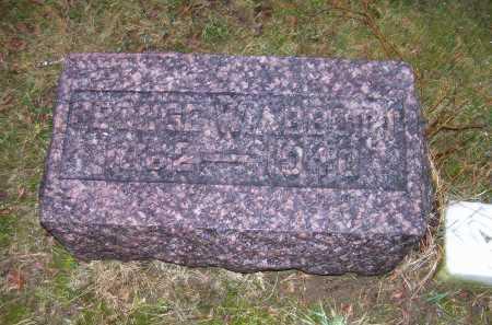 ABBOTT, GEORGE W. - Adams County, Ohio | GEORGE W. ABBOTT - Ohio Gravestone Photos