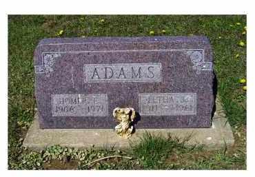ADAMS, HOMER E. - Adams County, Ohio | HOMER E. ADAMS - Ohio Gravestone Photos