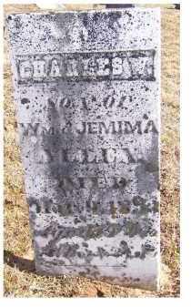 ALLEN, CHARLES W. - Adams County, Ohio | CHARLES W. ALLEN - Ohio Gravestone Photos