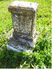 ALLISON, VIRGINIA - Adams County, Ohio | VIRGINIA ALLISON - Ohio Gravestone Photos
