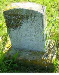 ALLISON, WILLIAM HENRY - Adams County, Ohio | WILLIAM HENRY ALLISON - Ohio Gravestone Photos