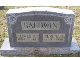 BALDWIN, JAMES D. - Adams County, Ohio | JAMES D. BALDWIN - Ohio Gravestone Photos