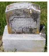 BEIGHLE, DOROTHY D. - Adams County, Ohio   DOROTHY D. BEIGHLE - Ohio Gravestone Photos