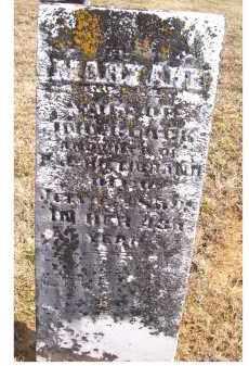 BLACK, MARY ANN - Adams County, Ohio | MARY ANN BLACK - Ohio Gravestone Photos